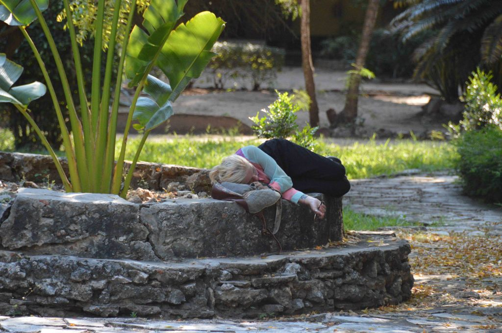 Resting after a hard day's work in the Botanical Gardens in Dar es Salaam