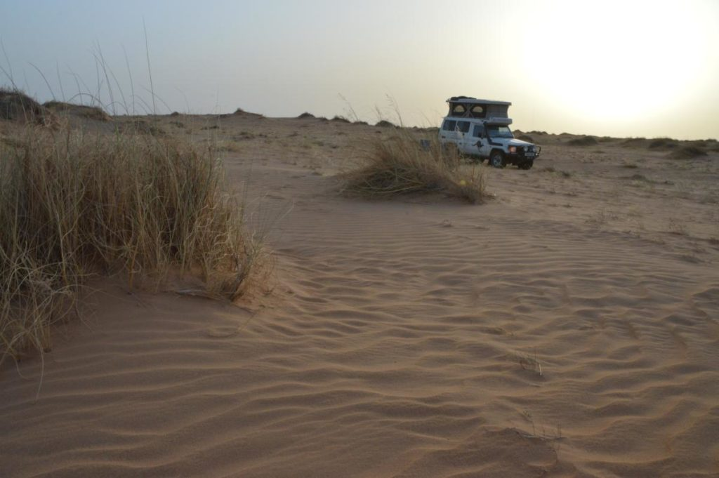 Camping in the Sandy Sahara