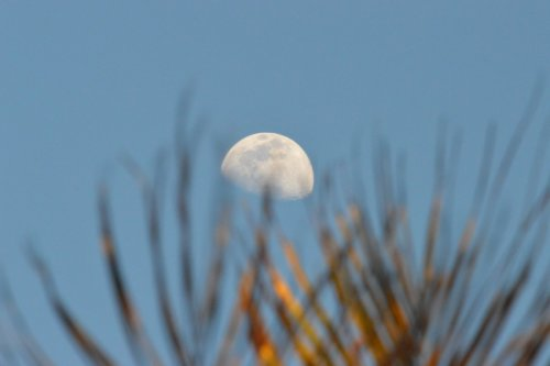 2014-10-03--17.37.41edit